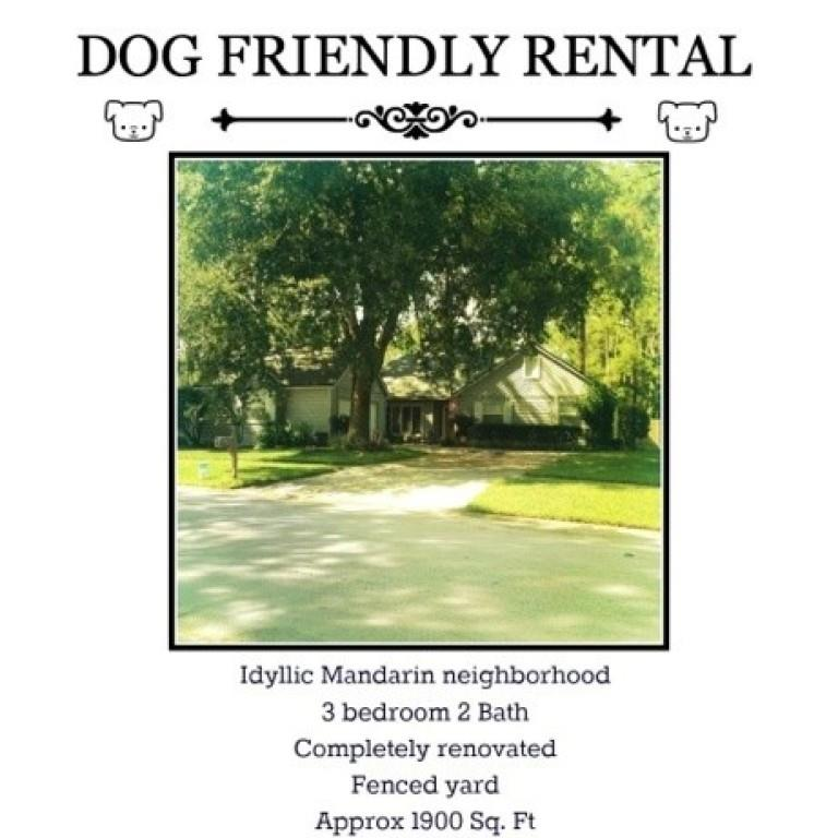 dog-only rental