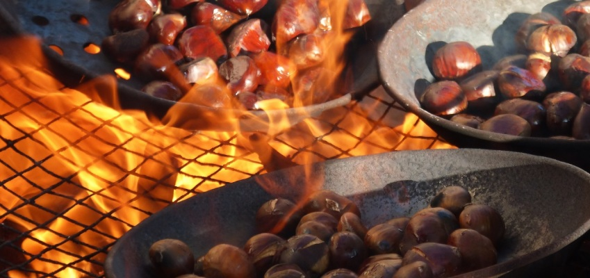 roasting chestnuts850x400 aug2017