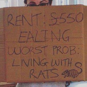 ventyourrent cropped